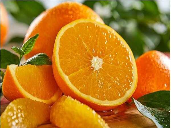 Dự đoán xổ số miền bắc khi mơ thấy quả cam