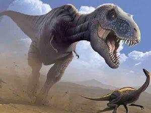 Nằm mơ thấy khủng long đánh số gì ăn chắc, là điềm báo gì
