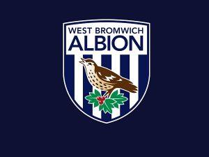 Câu lạc bộ bóng đá West Bromwich Albion – Lịch sử, thành tích của CLB